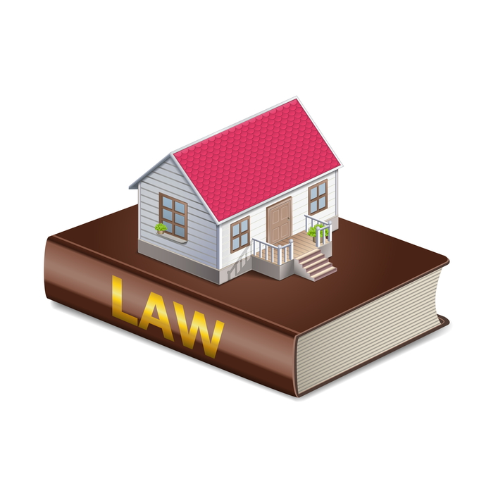 Vector real estate and law concept